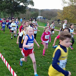 Junior Academy cross country meet